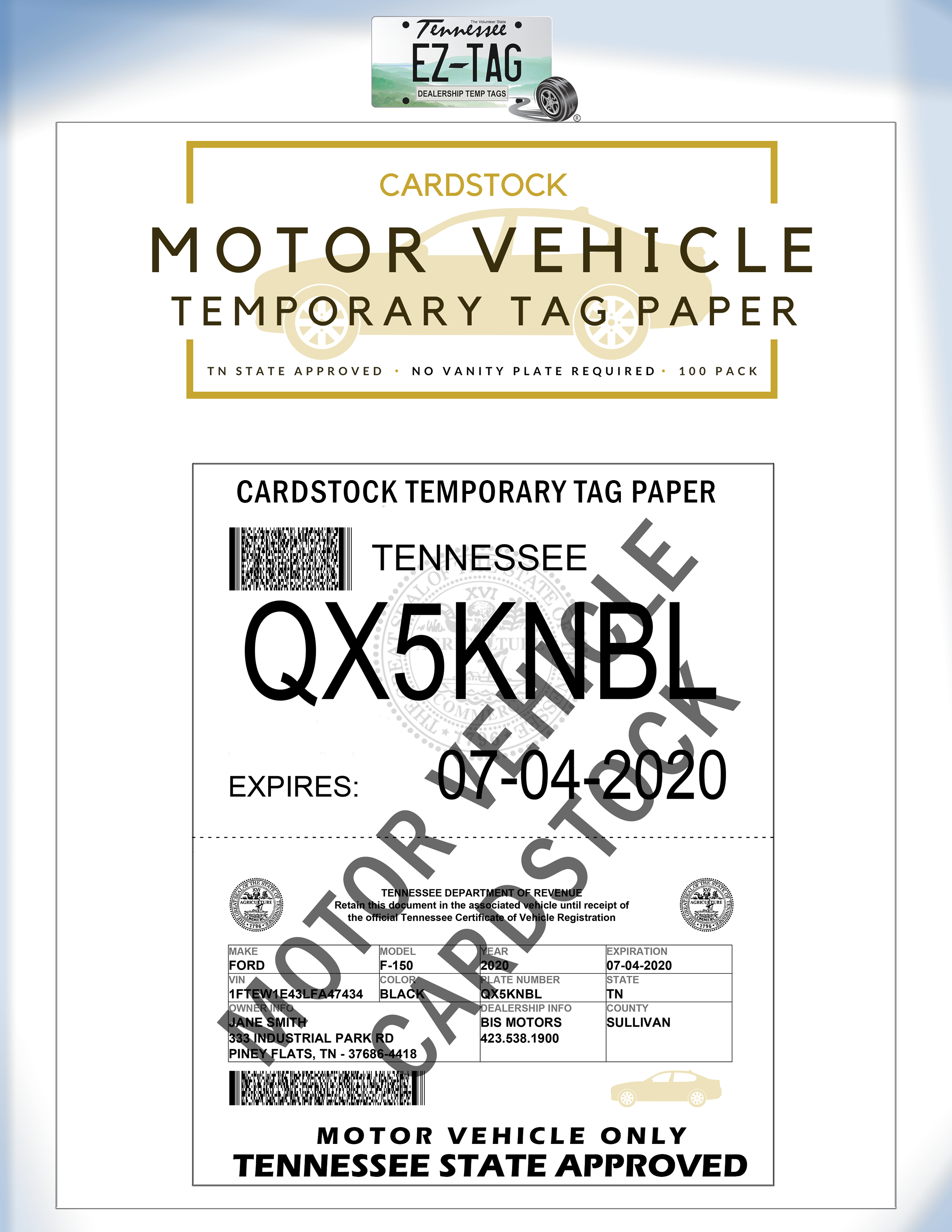 EZ Tag Motor Vehicle Temporary Tag Cardstock Paper (100 Pack)